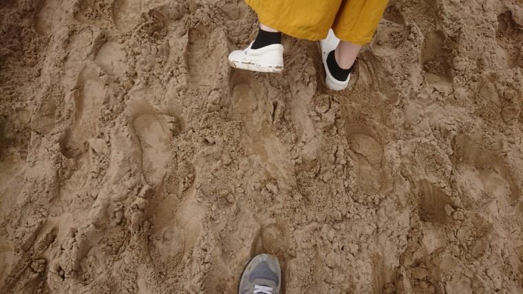 砂丘の歩き方