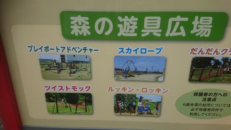 森の遊戯広場